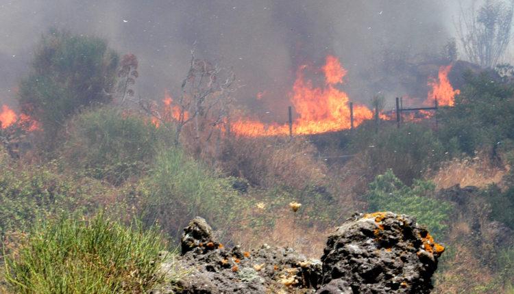 pericoli incendi a catania (1)