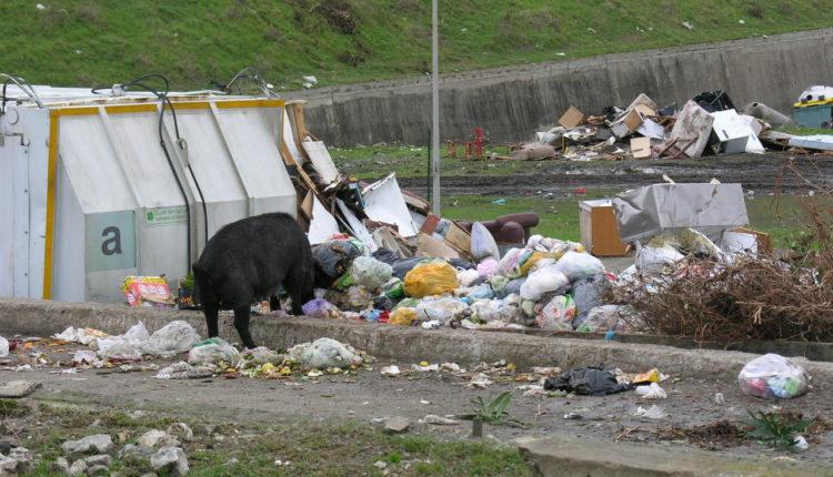 sequestro rifiuti Milazzo (6)