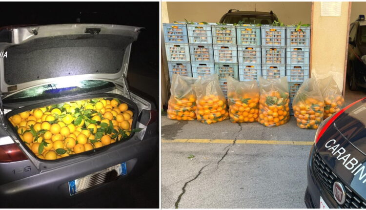 furto arance
