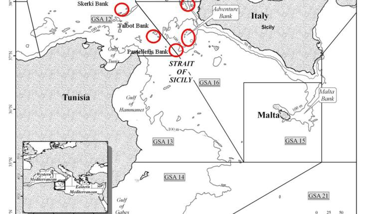 mappa banchi di pesca