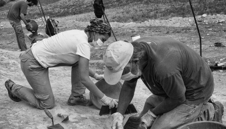 Parco Archeologico Segesta, campagna scavi 2020 con Scuola Normale Superiore di Pisa, 1