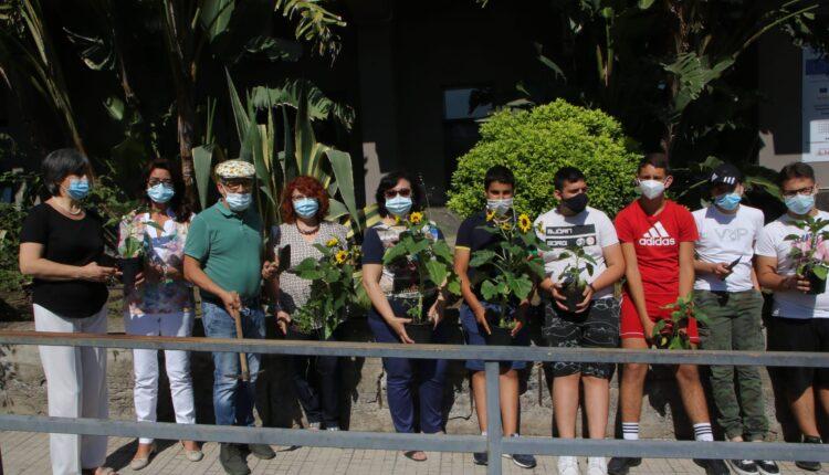 piantati i girasoli della legalità all'istituto fermi-eredia di catania (3)