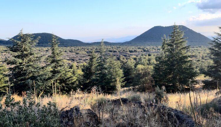 Escursione monte Ruvolo 1