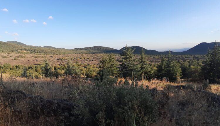 Escursione monte Ruvolo 6