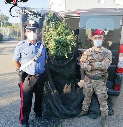 arresti x droga CC Calatabiano