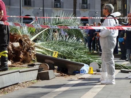 ++ Maltempo: vento sradica palma, donna morta a Catania ++