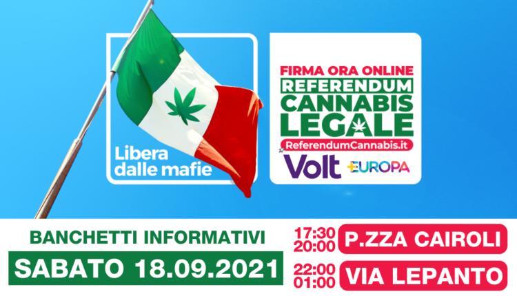 cannabis-messina-volt_+europa