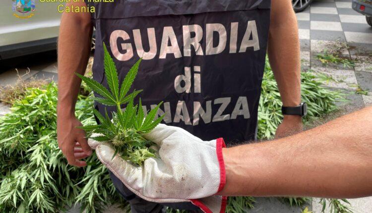 droga Catania